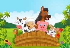 Animais de exploração agrícola da coleção dos desenhos animados na floresta Fotografia de Stock Royalty Free