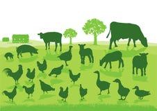Animais de exploração agrícola verdes ilustração do vetor