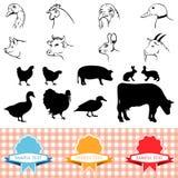 Animais de exploração agrícola Imagens de Stock