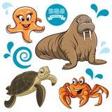 Animais de mar Imagens de Stock Royalty Free
