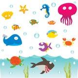 Animais de mar Fotografia de Stock Royalty Free