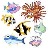 Animais de mar dos desenhos animados ajustados com fundo branco Foto de Stock