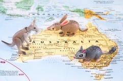 Animais de Toy Australian no mapa imagens de stock
