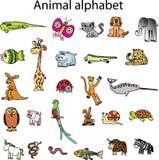 Animais do alfabeto animal Fotografia de Stock Royalty Free
