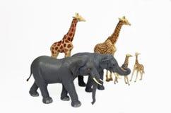 Animais do jardim zoológico do brinquedo Fotos de Stock Royalty Free