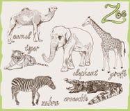 Animais do jardim zoológico Fotografia de Stock