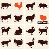 Animais domésticos Animais de exploração agrícola Ícones dos animais Fotos de Stock Royalty Free