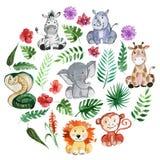 Animais dos amigos da selva da aquarela, África, folhas tropicais Imagem de Stock