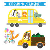 Animais dos desenhos animados nos veículos ilustração do vetor