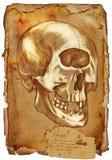 Animais e monstro legendários: CYCLOPS Imagens de Stock Royalty Free