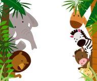 Animais e quadro Foto de Stock