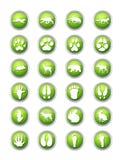 Animais e seus ícones dos traços Foto de Stock Royalty Free