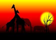 Animais em África ilustração royalty free