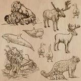 Animais em todo o mundo (parte 5) Bloco tirado mão do vetor Fotos de Stock Royalty Free