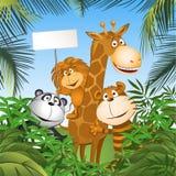 Animais engraçados Imagem de Stock