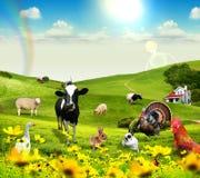 Animais na vila Fotos de Stock Royalty Free