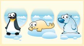Animais polares ilustração do vetor