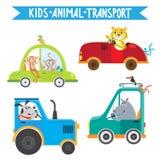 Animais que conduzem veículos ilustração stock