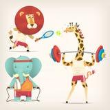 Animais que fazem esportes Imagem de Stock