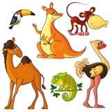 Animais selvagens africanos ajustados Imagens de Stock Royalty Free