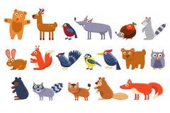 Animais selvagens ajustados, urso bonito da floresta dos desenhos animados, pássaro, ouriço, lobo, guaxinim, alce, cervos, coelho Foto de Stock