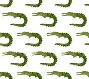 Animais selvagens da aquarela de África - crocodilo Mão desenhada ilustração stock