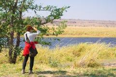Animais selvagens de observação do turista por binocular beira no rio de Chobe, Namíbia Botswana, África Parque nacional de Chobe Imagem de Stock