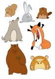 Animais selvagens dos desenhos animados Fotos de Stock