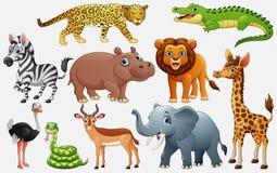 Animais selvagens dos desenhos animados no fundo branco ilustração do vetor