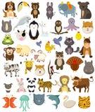 Animais selvagens dos animais e animais de estimação e animais de exploração agrícola ilustração do vetor