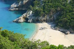 Animais selvagens em Sardinia imagens de stock royalty free