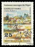 Animais selvagens, gazela do Dama fotografia de stock