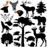 Animais selvagens na floresta ilustração stock