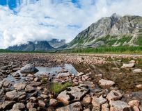 Animais selvagens Siberian, escala de Kodar Rio de pedra Syulban foto de stock royalty free