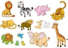 Animal Imagem de Stock