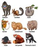 Animal stock de ilustración