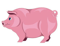 Animal. Thick animal pink on a white background Stock Photo
