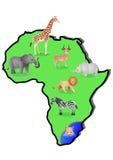 Animal Africa Royalty Free Stock Photo