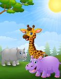 Animal african cartoon in the jungle Stock Image
