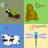 Animal alphabet Royalty Free Stock Photos