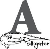 Animal alphabet A (alligator) Royalty Free Stock Images