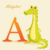Animal alphabet with alligator. Vector illustration Royalty Free Stock Photo
