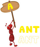 Animal alphabet a with ant. Illustration of isolated animal alphabet a with ant Royalty Free Stock Images