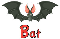 Animal alphabet B for bat. Illustration of isolated animal alphabet B for bat Stock Photo