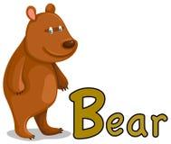 Animal alphabet B for bear. Illustration of isolated animal alphabet B for bear Stock Images