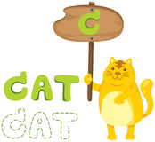 Animal alphabet c with cat Royalty Free Stock Photography