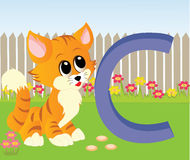 Animal Alphabet c. Illustration of alphabet letter C with a cute cat playing on grass Vector Illustration