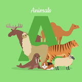 Animal Alphabet Concept in Flat Design Royalty Free Stock Photos
