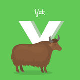 Animal Alphabet Concept in Flat Design. Animal alphabet vector concept. Flat style. Zoo ABC with domesticated animal. Yak bull standing on green background Stock Image