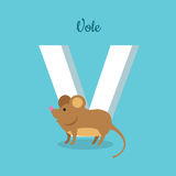 Animal Alphabet Concept in Flat Design. Animal alphabet vector concept. Flat style. Zoo ABC with wild animal. Cute vole mouse standing on blue background, letter Royalty Free Stock Images